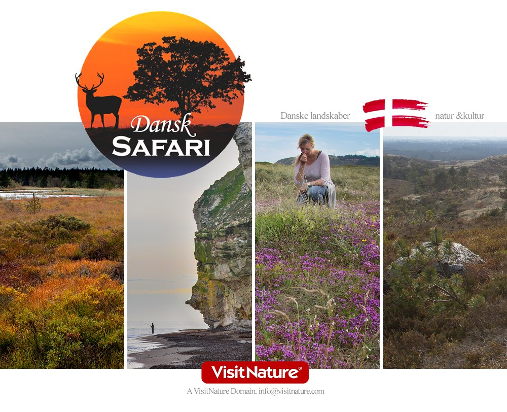 Dansk Safari Tours